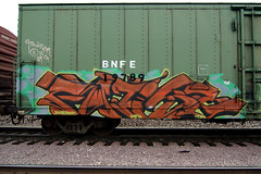 FATIGE (TRUE 2 DEATH) Tags: railroad train graffiti tag graf traintracks rusty trains bn railcar rusted weathered spraypaint boxcar railways railfan freight bnsf reefer cng graffitiart freighttrain mfk rollingstock thril wfe scrapped westernfruitexpress benching bnfe fatige bnfe19789