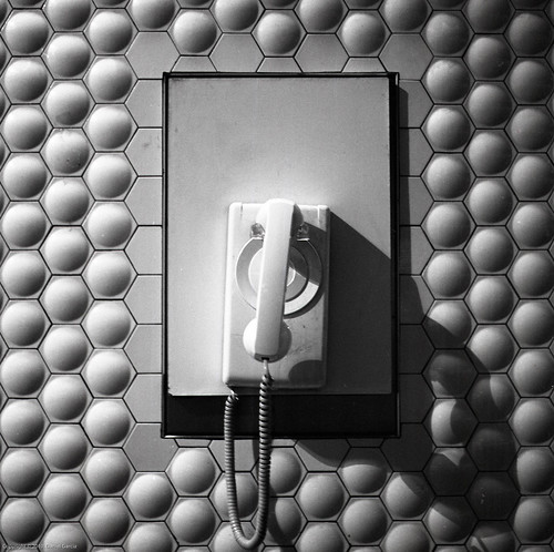 White Courtesy Phone