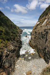 On the Safety Cove road (ToniFish) Tags: sightseeing tasmania tasmanpeninsular