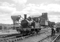 14xx class no.1420. Alveley Colliery sidings. SVR. 19 September 1965 (ricsrailpics) Tags: uk shropshire steam special sls 1965 svr severnvalleyrailway highley 042t exgwr 14xxclass alverleycolliery