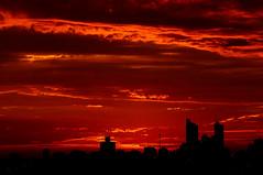 Pôr do Sol (Rogerio Motoda) Tags: sunset sky sun sol céu pôrdosol sideview tarde silhueta top20sunsetsofourhearts