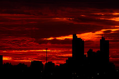 Pôr do Sol (Rogerio Motoda) Tags: sunset pordosol sky sun sol céu sideview tarde silhueta top20sunsetsofourhearts