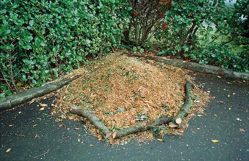 a pile