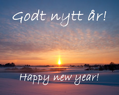 Godt nytt år / Happy new year (2011)
