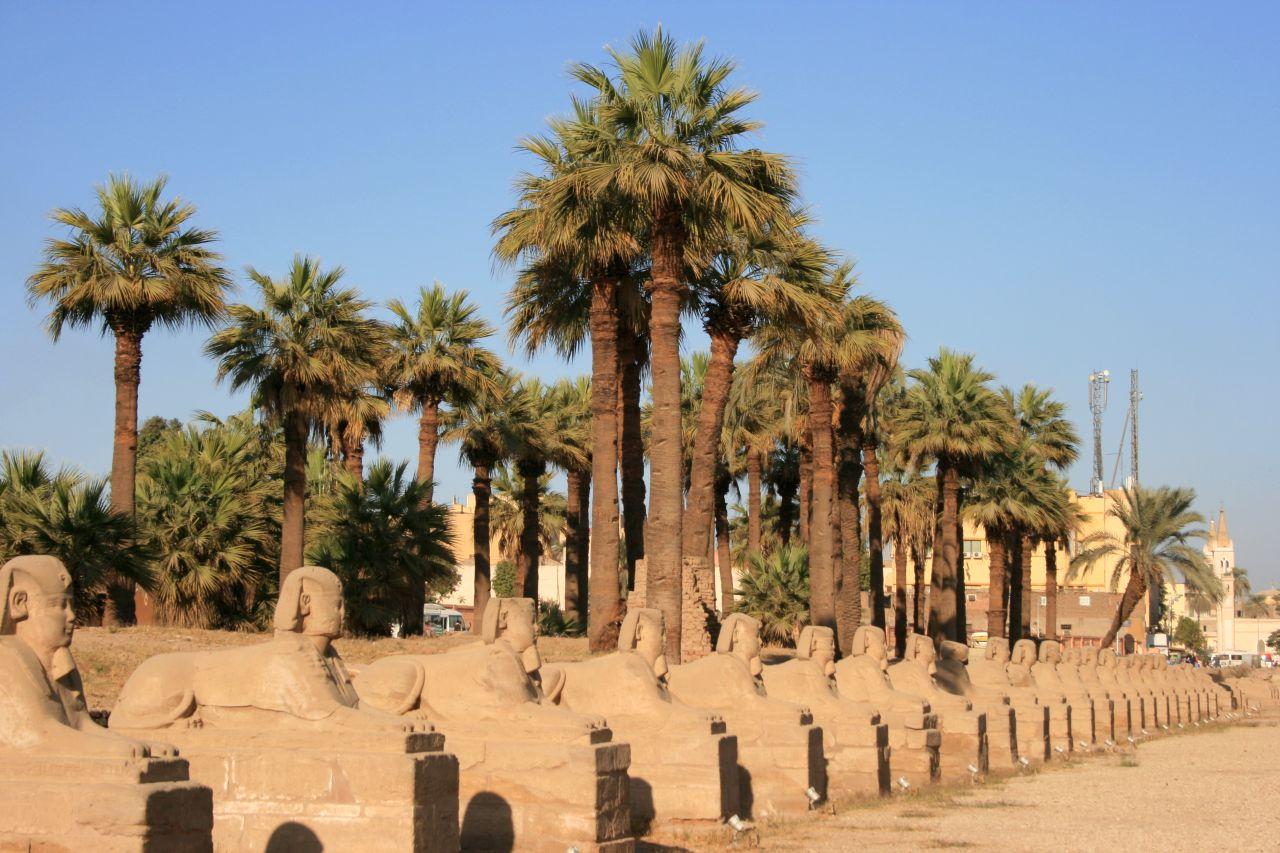 Luxor Temple 44