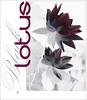 Black Lotus - BlackLotus-44-0700 (Bahman Farzad) Tags: flowers black flower macro yoga poster design peace lotus relaxing peaceful meditation therapy lotusflower lotuspetal blacklotus lotuspetals lotusflowerpetals lotusflowerpetal