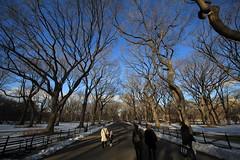 Central Park 38 (Nick Mulcock) Tags: park new york city nyc fall canon mall is bokeh d centralpark central center telephoto angels 200 l rockefeller 8mm 70 70200 60 2010 816 60d