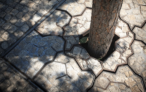 Tree Grate Innovation