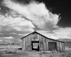 The Weathered Past (one_vision_photo) Tags: old blackandwhite abandoned broken clouds barn blackwhite interesting sad decay carriagehouse stormy forgotten tired worn ghosttown depressed bodie derelict