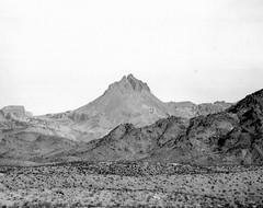 Mojave Desert (Shot by Newman) Tags: arizona bw mountains southwest nature 35mm daylight view desert ilford ilforddelta400 mojavedesert rockformation desertsetting shotbynewman
