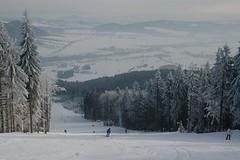 Buková hora (Červená Voda, Čenkovice) – aktuální report