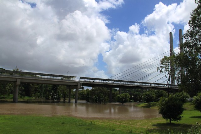 Dutton Park Green Bridge