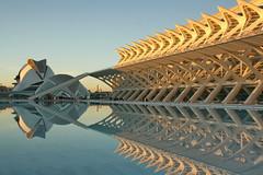 Ciutat de les Arts i les Ciències (mitko_denev) Tags: españa reflection valencia spain отражение cityofartsandsciences испания валенсия
