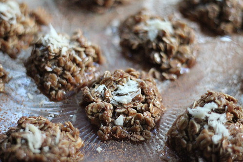 Close up Oatmeal Cookie