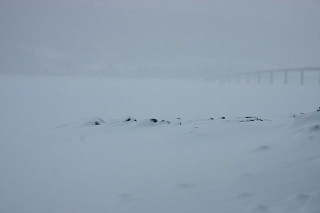 Moelv Norge 2011