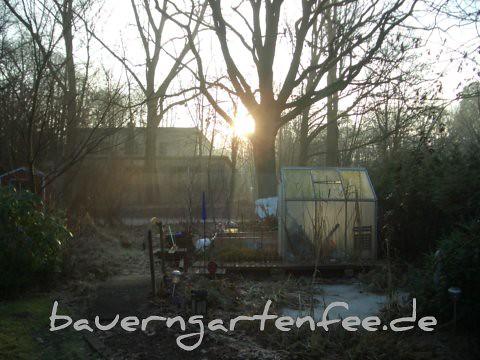 Morgensonne, 17.1.2010