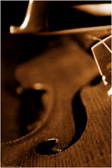 (L *) Tags: light music stilllife macro nikon bokeh violin musica instrument 1855 musicale violino d60 strumento