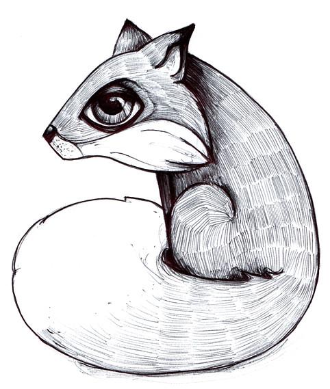 Fox © Emilie Vasset