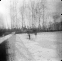 Ezels in de sneeuw (La paysanne) Tags: sahran
