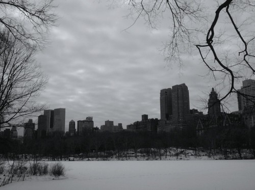 Central Park in Snow 2
