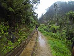 Karangahake Historical Walk-3