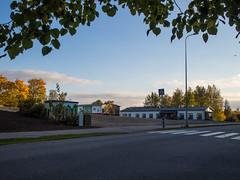 Ehnroosin paikka (MikeAncient) Tags: mntsl finland suomi syksy fall autumn foliage syksynlehdet puu puut tree trees