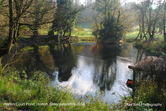 Horton Court Pond, Horton, Gloucestershire 2014 (raybird299) Tags: horton gloucestershire lakes