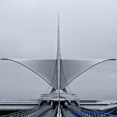 Fall into Winter - Equinox to Solstice #15 - Calatrava (elviskennedy) Tags: 6s 6splus architechture art bw blackwhite blackandwhite boat bridge brisesoleil building calatrava city clouds davidkahler downtown elvis elviskennedy flight fog foggy iphone iphone6splus iphone6s kahler kennedy lakemichigan milwaukee milwaukeeartmuseum museum ocean outdoors outside plus quadracci sailboat sailing santiagocalatrava sea ship shipping soleil sunbreaker walkway water wi wing wingspan wisconsin wwwelviskennedycom unitedstates us