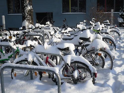 Winter in Erfurt (10)
