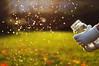 Crazy Beautiful Life (Danielle Pearce) Tags: white water glass bottle nikon bokeh can gloves jar bella splash firefly fireflies d5000
