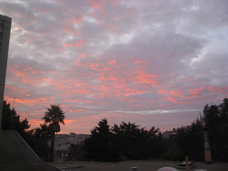 morning, december 1