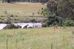 Flying Fox over the Gudgenby River (John Lafferty Photography) Tags: geotagged book flooding australia aus blurb australiancapitalterritory theangle sunshineroad geo:lat=3557675945 geo:lon=14906660646 blurbbookwwwblurbcombookstoredetail2283708