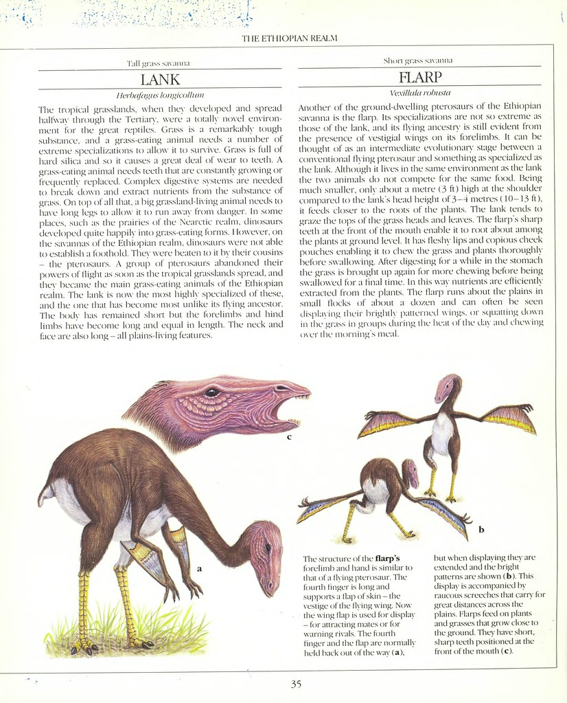 The New Dinosaurs - Dougal Dixon 1988_page_0035