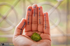 Save Earth !!! (Pranav Prakash) Tags: green canon 50mm leaf hand earth save environment mumbai 1000d