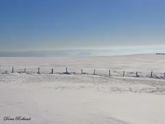 Horizon Blanc (Domi Rolland ) Tags: france nature europe bleu ciel neige blanc froid aveyron midipyrénées lévézou bouloc