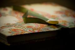 Flamboyan notebook (Melissa Maples) Tags: green turkey notebook nikon asia trkiye antalya nikkor vr afs  flamboyan 18200mm   f3556g d40  18200mmf3556g