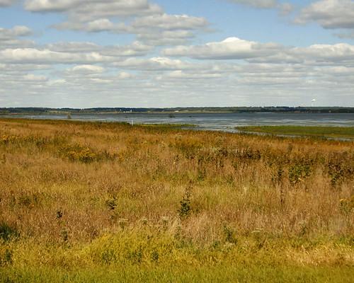 WetlandPull-offEmiquon10042010JGWard_MG_6482