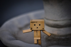 day 14- Danbo slips on ice (Pat_Landor) Tags: fall ice 50mm nikon f18 danbo d5000 motleypixel
