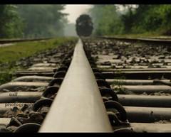 On the way to home (Asif Adnan Shajal) Tags: travel green rural train photography asia village sony railway colored gram bangladesh southasia onthewaytohome explored chuadanga railwaytrain villagehome framebangladesh asifadnanshajal chuadangabangladesh railwaybangladesh