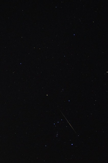 A meteor through Orion