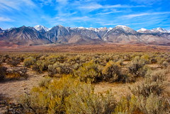 Sierra Nevada (nebulous 1) Tags: mountains nikon sage sierra sierranevada hwy395 owensvalley 395 easternsierra highdessert nebulous1