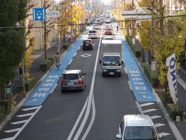兵庫県道606号線(西宮豊中線) 自転車専用レーン
