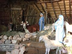 Garda - presepio (Luciana.Luciana) Tags: garda lagodigarda prespio natale 2010 lago presepi weihnacht christmas noel