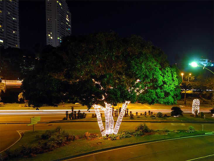 soteropoli.com fotografia fotos de salvador bahia brasil brazil 2010 luzes de natal by tuniso (12)