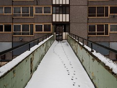 Paw-prints (tubb) Tags: winter snow estate footprints staircase newington councilestate councilflats elephantandcastle tubb heygate highwalk foxinthesnow nikkor1024mmdx itsnotasiftheyrepayingyou