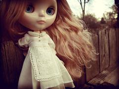 Vinter Arden on a fence