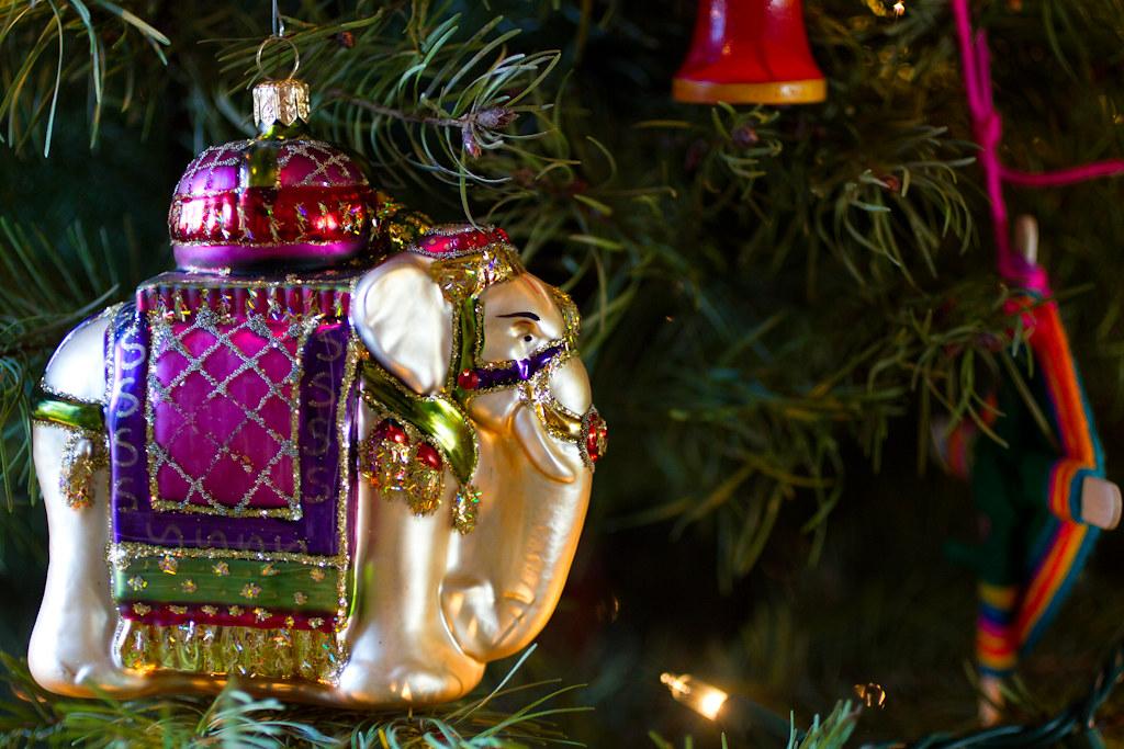 Christmas 2010 (web)-8836