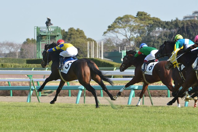Arima Kinen meeting, before noon.