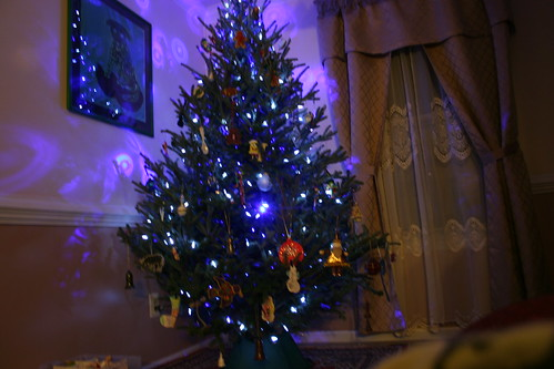 December 2010: Nicholas took this one of the tree the first night it was lit.  Blue and white lights only.
