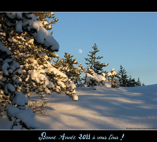 Bonne année 2011 à vous tous !